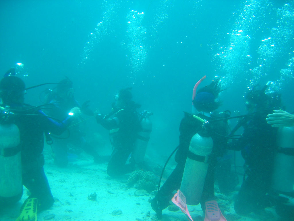 Underwater in Anilao