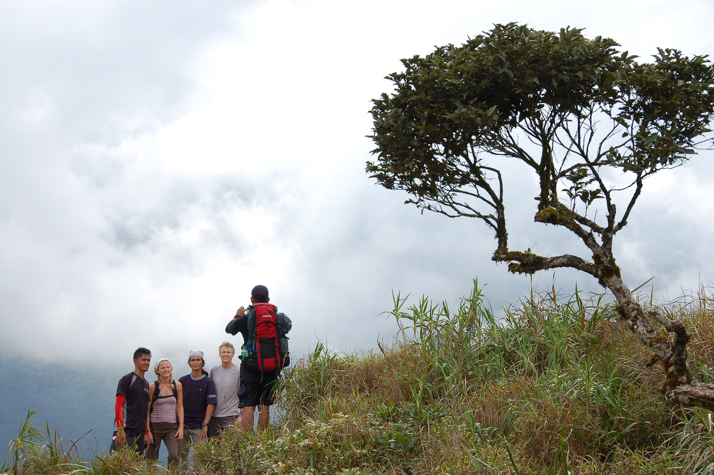 Mt. Halcon Mindoro