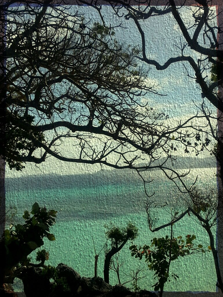 Malcapuya Island, Coron, Palawan by Lawrence Davis