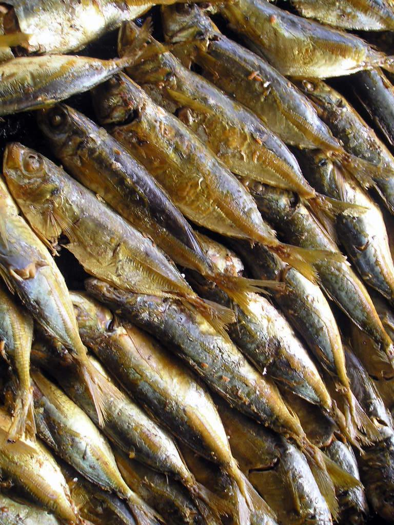 Fish Tuyo in Balanga