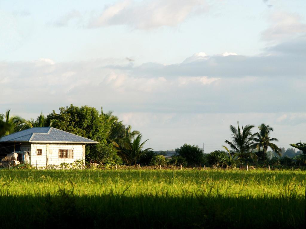 A House in Plaridel, Bulacan