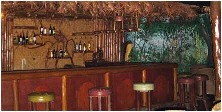 jungle-bar