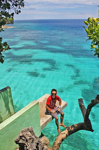 Diving_board_(concrete)_Salagdoong_Beach_(11052547025)