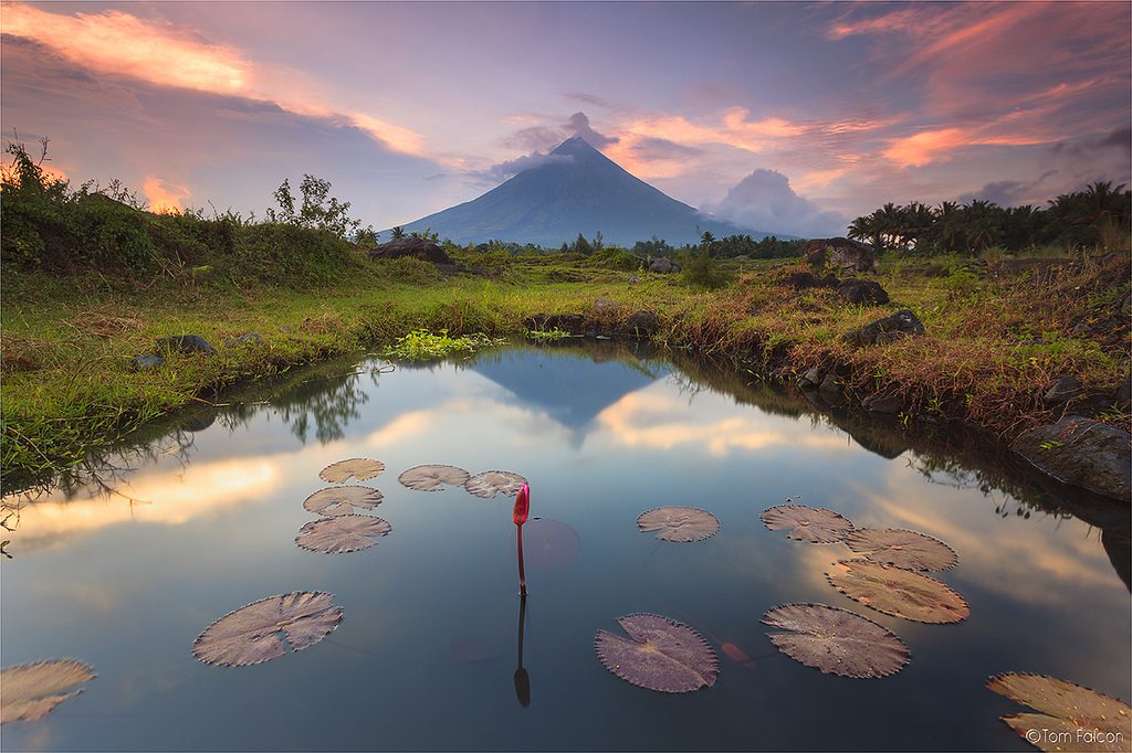 A Traveler's Guide to Legazpi City, Albay and on to Mayon Volcano
