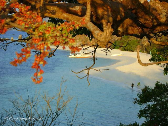Malcapuya Island Photo by: Caryl Joan Estrosas/Creative Commons