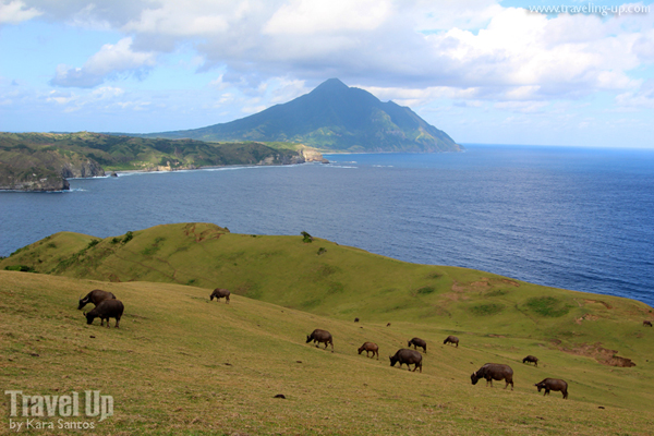 Marlboro Hills, Batanes Photo by: www.traveling-up.com/Creative Commons