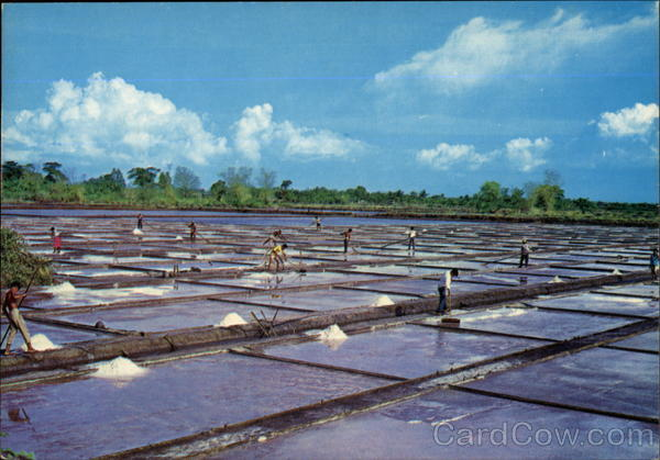 Las Piñas salt beds Image source: www.cardcow.com