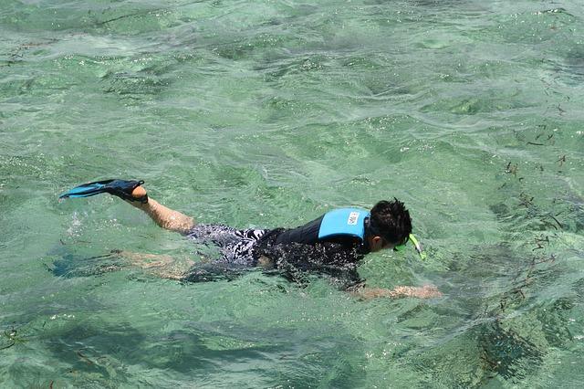 Snorkeling Photo by: pixabay.com