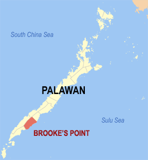 Map of the Brooke's Point, Palawan Photo by: TheCoffee /Wikimedia Commons