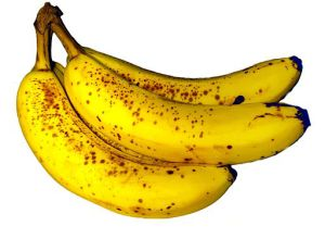 Banana Photo by: ZooFari/Wikimedia Commons